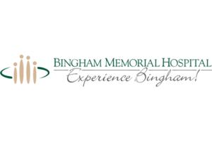 BingMem Logo